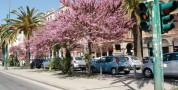 Corsia centrale via Roma: sosta riservata esclusivamente ai residenti della Ztl Marina