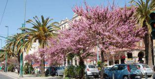 Via Roma e Largo Carlo Felice: modifiche a traffico e sosta da giovedì 28 aprile